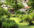 Jardin - Aux Contasses